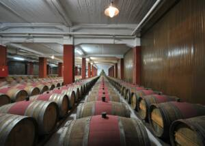 Wine Barrels in the Vaeni Naoussa