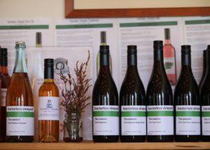 Wine bottles of the Tractorless Vineyard winery