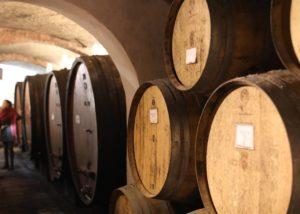 Barrels inside the cellar room of the Villa s. anna winery