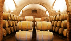 Wine barrels of the Villa s. anna winery