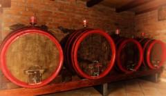 Barrels in cellar of the Vina Kosutic winery