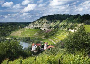 Vineyads of Weingut Fürst Löwenstein Winery on the slope that ends in a river.