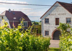Buildings of Weingut jakob neumer winery