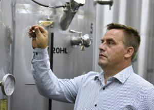 winemaker working in the cellar of zaloščan vina de adami winery