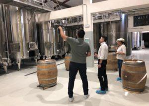 Tenuta Valle delle Ferle winemakers standing in front of tanks