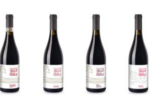 bottles of wine made in Tenuta Valle delle Ferle winery in Italy