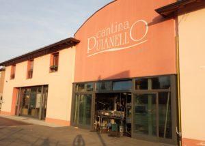 puianello e coviolo beautiful orange estate and courtyard of the winery