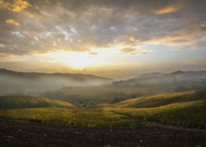 matteo soria beautiful picturesque landscapes near italian winery