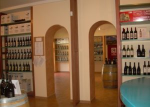 Terre di San Ginesio wine tasting at the vineyard in the evening
