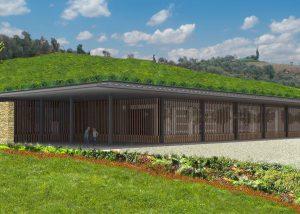 Vineyard Of Azienda Agricola Bisson Winery
