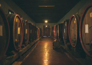 Barrels Of The Azienda Agricola Rechsteiner Winery