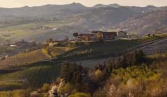 Aerial View Of Azienda Agricola Tenuta Capri Winery