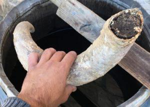 horn used at Bodega Negon vineyard in Spain