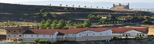Bodegas Ramirez de la Piscina vineyard landscape in Spain