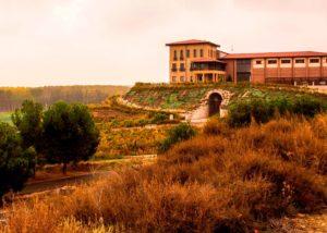 full landscape of Bodegas Manzanos estate in Spain