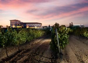 Bodegas Manzanos vineyard located in Spain
