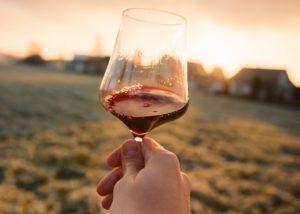 bodegas monovar glass of divine red wine near winery in spain