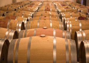 huge barrels full of wine at Bodega Vi Rei winery