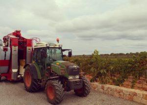 tractor working at Bodega Vi Rei vineyard in Spain