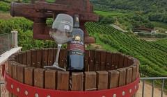 Bottling Wine At Boscaini Carlo Winery