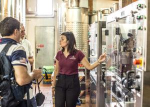 Bottling Machine Of Cantina Del Vesuvio Winery