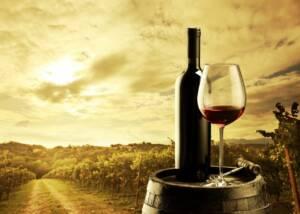 A GLass of Cantina Ortenzi Wine