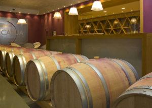 Barrels At Capua Winery