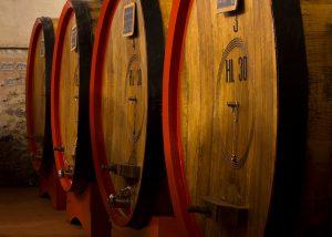 Barrels At The Cellar Of Carpineto Winery