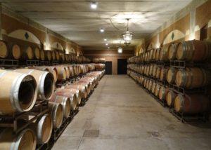 barrels stored at casale del giglio società agricola