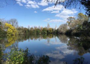 lake near casale del giglio società agricola