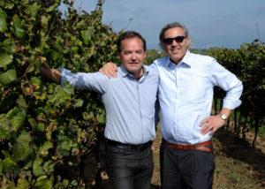 owners of casale del giglio società agricola