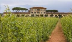 main building of casale del giglio società agricola