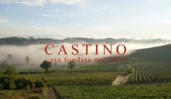 Vineyards Of Castino Winery
