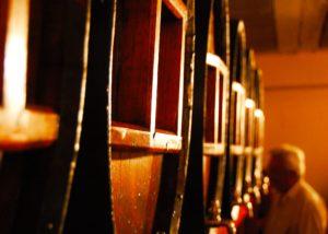 celler grau i grau winemaker inside wine cellar in the spanish winery