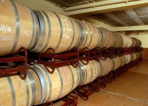 celler grau i grau many wooden barrels for wine aging in the cellar