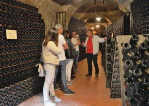 cellar tour at d'arapri agricola