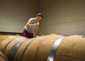 winemaker at barrels of wine in Dehesa De Luna winery cellar in Spain