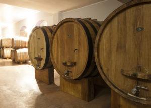 Barrels Of Dogliani Il Generale Winery