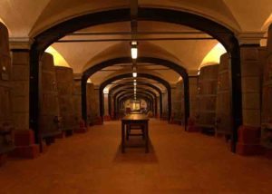 Cellar Of Dominio Di Bagnoli Ss Winery