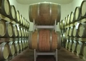Terre di San Ginesio winery cellar with barrels full of wine inside