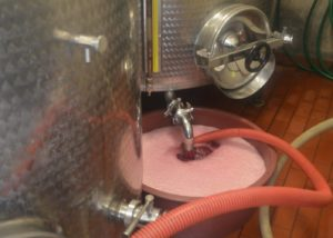 Tenuta Montiani slow winemaking process inside winery