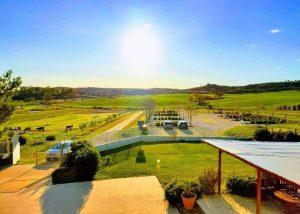 Area Around Fattoria Selvapiana Winery