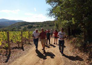 People Visiting Vineyard Of Fradiles Winery