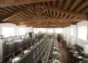 Cellar Of Gigliotto Tenute Winery