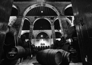 gutierrez colosia amazing wine cellar with many wooden barrels