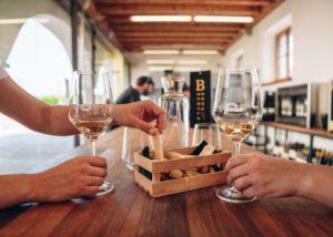 Wine Tasting At Klet Brda Winery