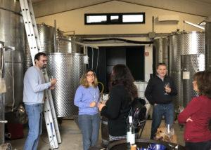 tour to the cellar of la chimera d'albegna