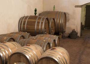 Barrels Of The La Querce Winery