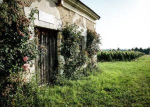 side view of les caves de la loire winery