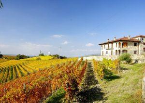 Building Of Manfredi Aldo Winery